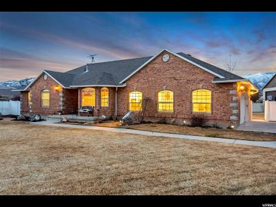 Lehi Single Family Home For Sale: 443 E 2850 N