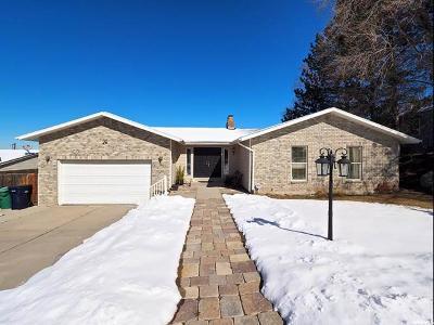 Sandy Single Family Home For Sale: 1523 E 8685 S