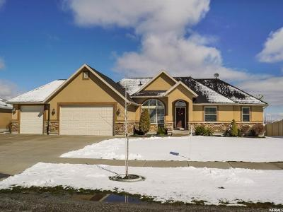 Wellsville Single Family Home For Sale: 63 W 1130 S
