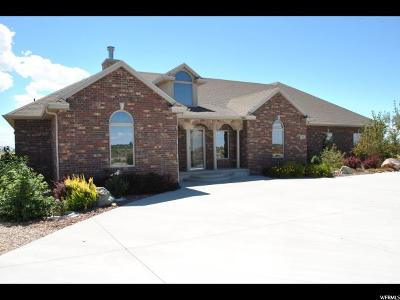 Single Family Home For Sale: 136 E 2000 S