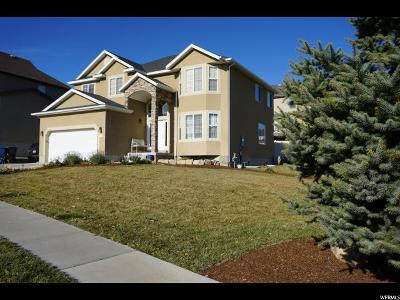 Saratoga Springs Single Family Home For Sale: 302 W Rye Dr
