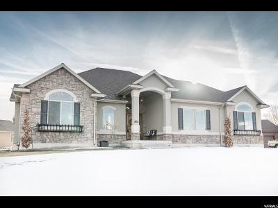 Tremonton Single Family Home For Sale: 865 N 400 E