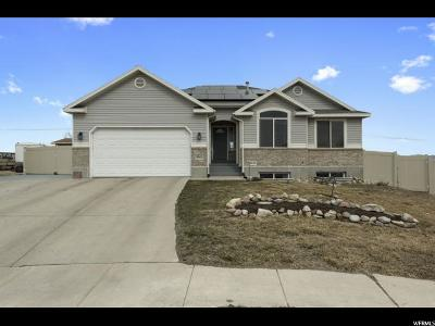 West Valley City Single Family Home For Sale: 6221 S Palomar Pl W