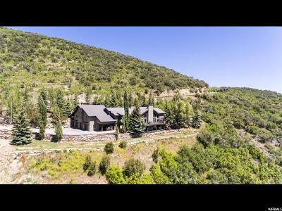 Park City Single Family Home For Sale: 2580 Bear Hollow Dr
