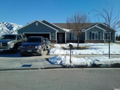 Hyde Park Single Family Home For Sale: 664 S 150 W