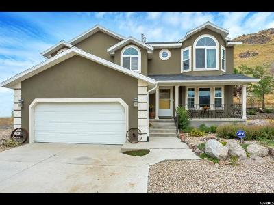 Herriman Single Family Home For Sale: 15091 Step Mountain Rd S