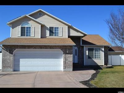 Midvale Single Family Home For Sale: 7748 S Devin Pl