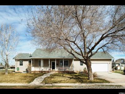 Fillmore Single Family Home For Sale: 230 W 400 N