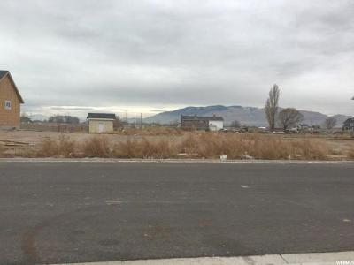 Lehi Residential Lots & Land For Sale: 2699 Osier Ave