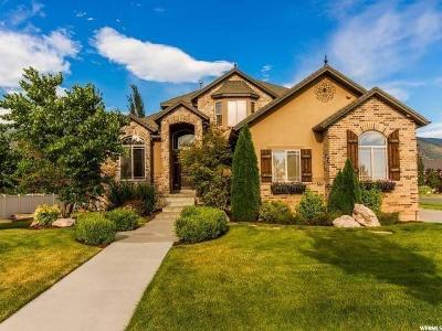 Farmington Single Family Home For Sale: 461 S 1350 W