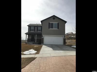 Saratoga Springs Single Family Home For Sale: 141 Caracara St