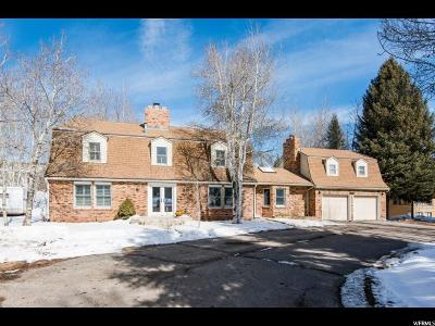Park City Single Family Home For Sale: 1760 Lucky John Dr