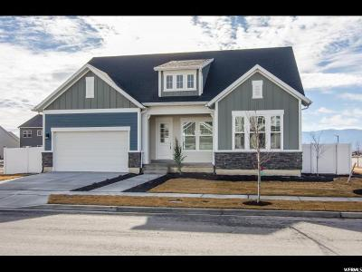 Lehi Single Family Home For Sale: 3379 W Cramden Dr N