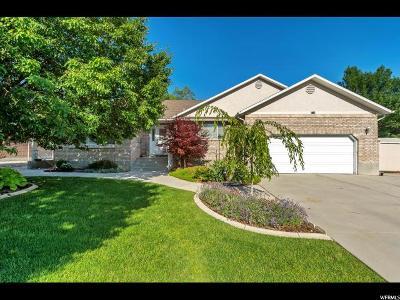 West Jordan Single Family Home For Sale: 9174 S 2040 W