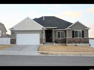 Herriman Single Family Home For Sale: 6612 W Desert Lily Cir
