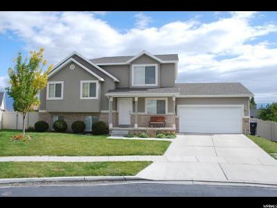 Saratoga Springs Single Family Home For Sale: 1948 N Vineyard Pl