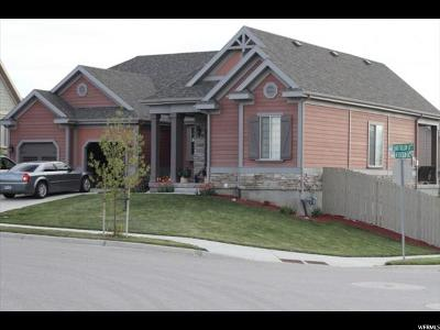 Lehi Single Family Home For Sale: 4767 N Shady Hollow Ln