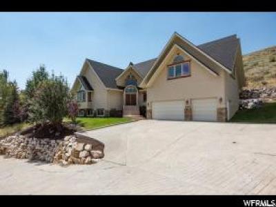 Salt Lake City Single Family Home For Sale: 5395 Pioneer Fork Rd