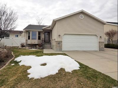 West Jordan Single Family Home For Sale: 6137 W Nellies St S