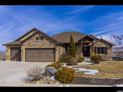 Santaquin Single Family Home For Sale: 631 Crest Dale Ln