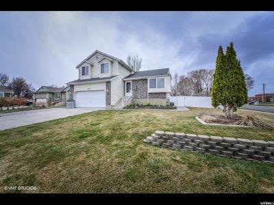 West Jordan Single Family Home For Sale: 8442 S 1670 W