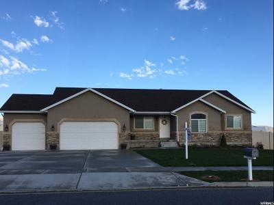 Grantsville Single Family Home For Sale: 458 S Saddle Rd