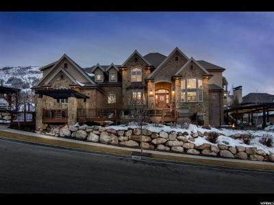 Draper Single Family Home For Sale: 14234 S Canyon Vine Cv