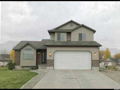 Wellsville Single Family Home For Sale: 659 N 850 E