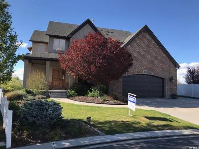 Draper Single Family Home For Sale: 467 E Foxstone Cv