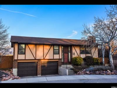 West Jordan Single Family Home For Sale: 7269 S Executive Dr W