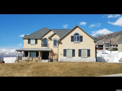 Cedar Hills Single Family Home For Sale: 3746 W Box Elder Dr N
