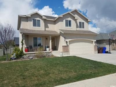 Eagle Mountain Single Family Home For Sale: 8481 N Nairn Rd