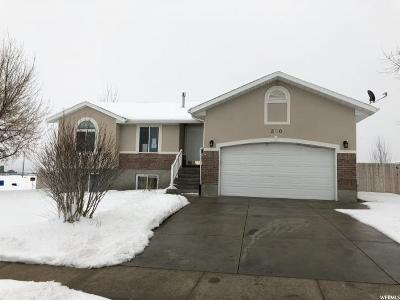 Hyrum Single Family Home For Sale: 380 N 1025 W