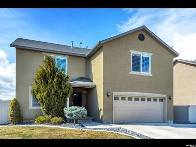 Lehi Single Family Home For Sale: 620 S Willow Park W