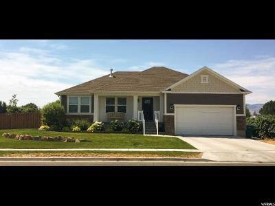 Lehi Single Family Home For Sale: 1533 W Adams St N