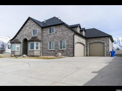 Orem Single Family Home For Sale: 317 S 760 W