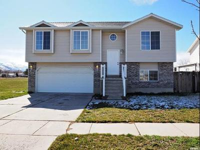 Ogden Single Family Home For Sale: 339 W Oaks Dr N