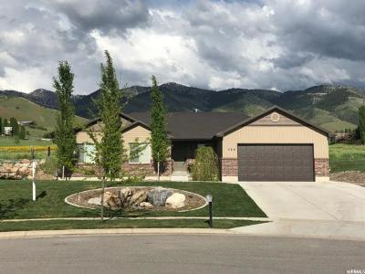 Hyde Park Single Family Home For Sale: 364 N 750 E
