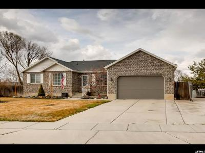 West Jordan Single Family Home For Sale: 5096 W Eagle Hill Cir