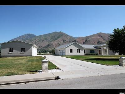Mapleton Single Family Home For Sale: 625 E 1700 N