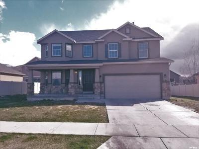 Payson Single Family Home For Sale: 244 E 1100 S