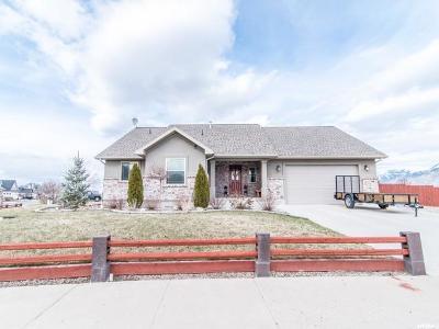 Wellsville Single Family Home For Sale: 865 E 550 N
