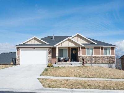 Saratoga Springs Single Family Home For Sale: 259 W Summerhill