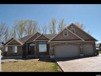 Riverton Single Family Home For Sale: 3583 W Johnson Crk S