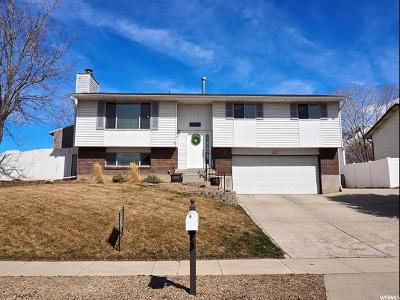 Sandy Single Family Home For Sale: 11467 S Dry Creek Rd