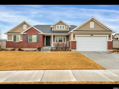 Riverton Single Family Home For Sale: 3853 W Red Sands Rd