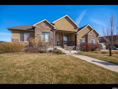 Herriman Single Family Home For Sale: 6262 W Freedom Hill Way