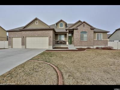 West Jordan Single Family Home For Sale: 8534 S Crowsnest Dr W