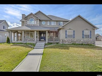 Sandy Single Family Home For Sale: 10946 S S Hyrum Pl S