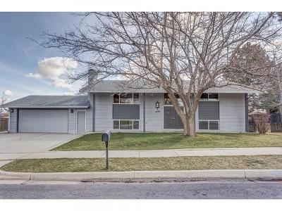 West Valley City Single Family Home For Sale: 4389 S Hawarden Dr W